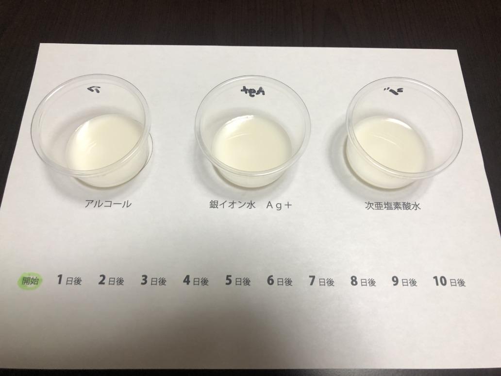 抗菌テスト初日