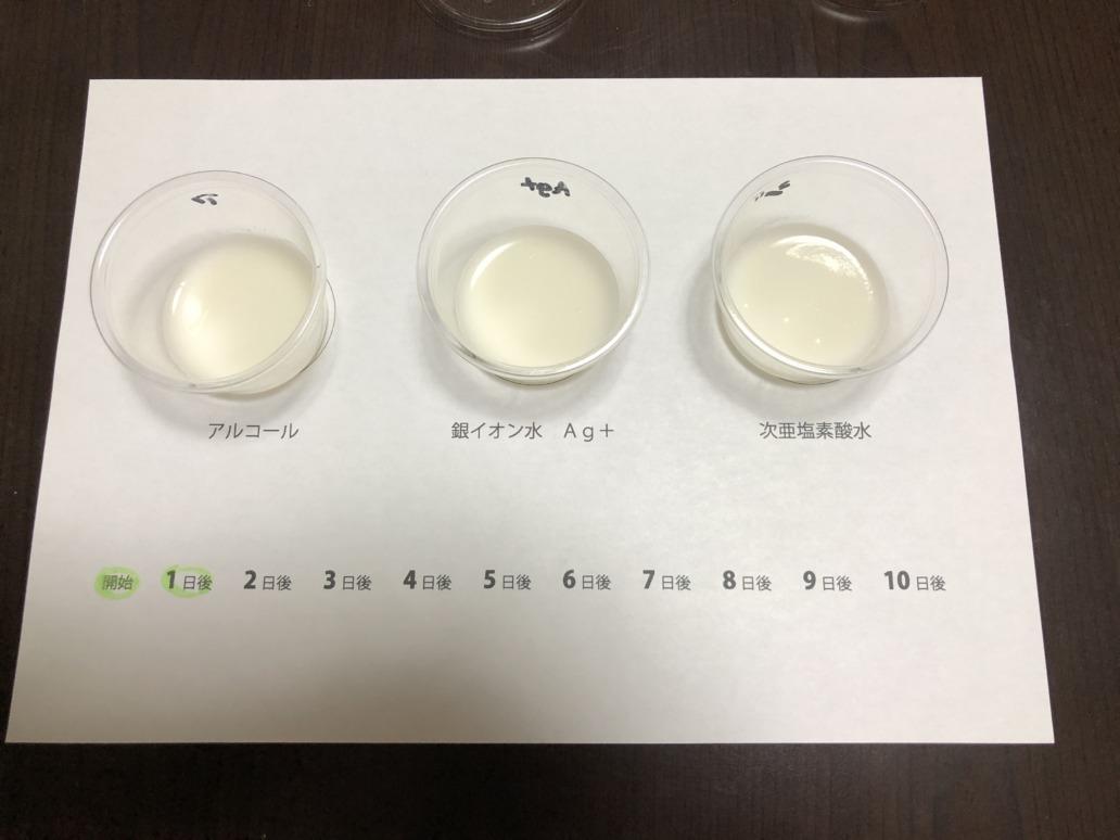 抗菌テスト1日