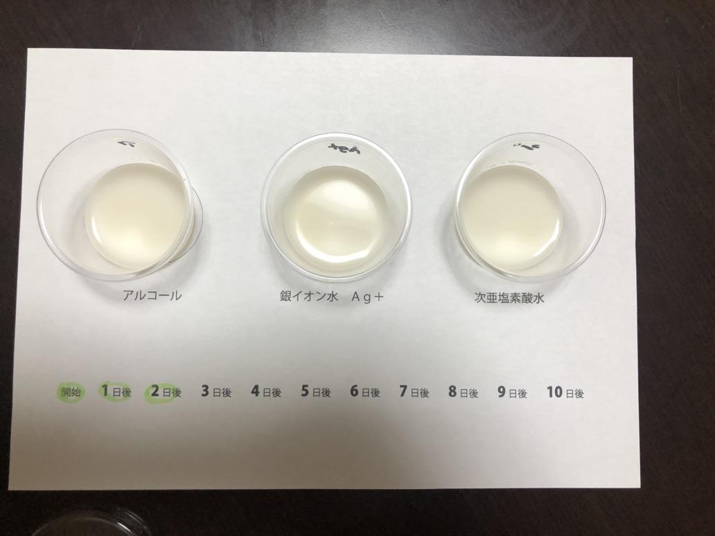 抗菌テスト2日後