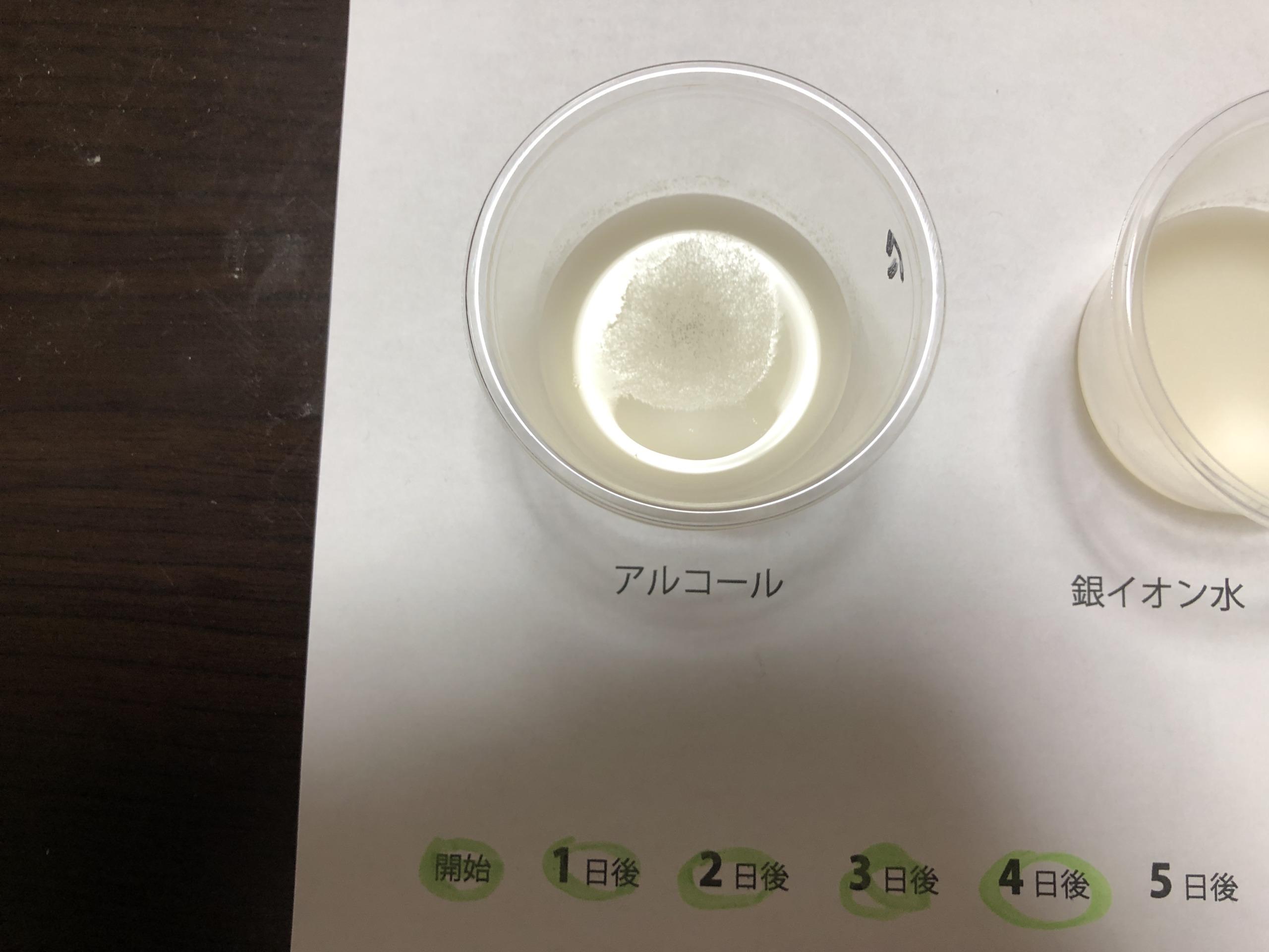 抗菌テスト4日後のアルコール