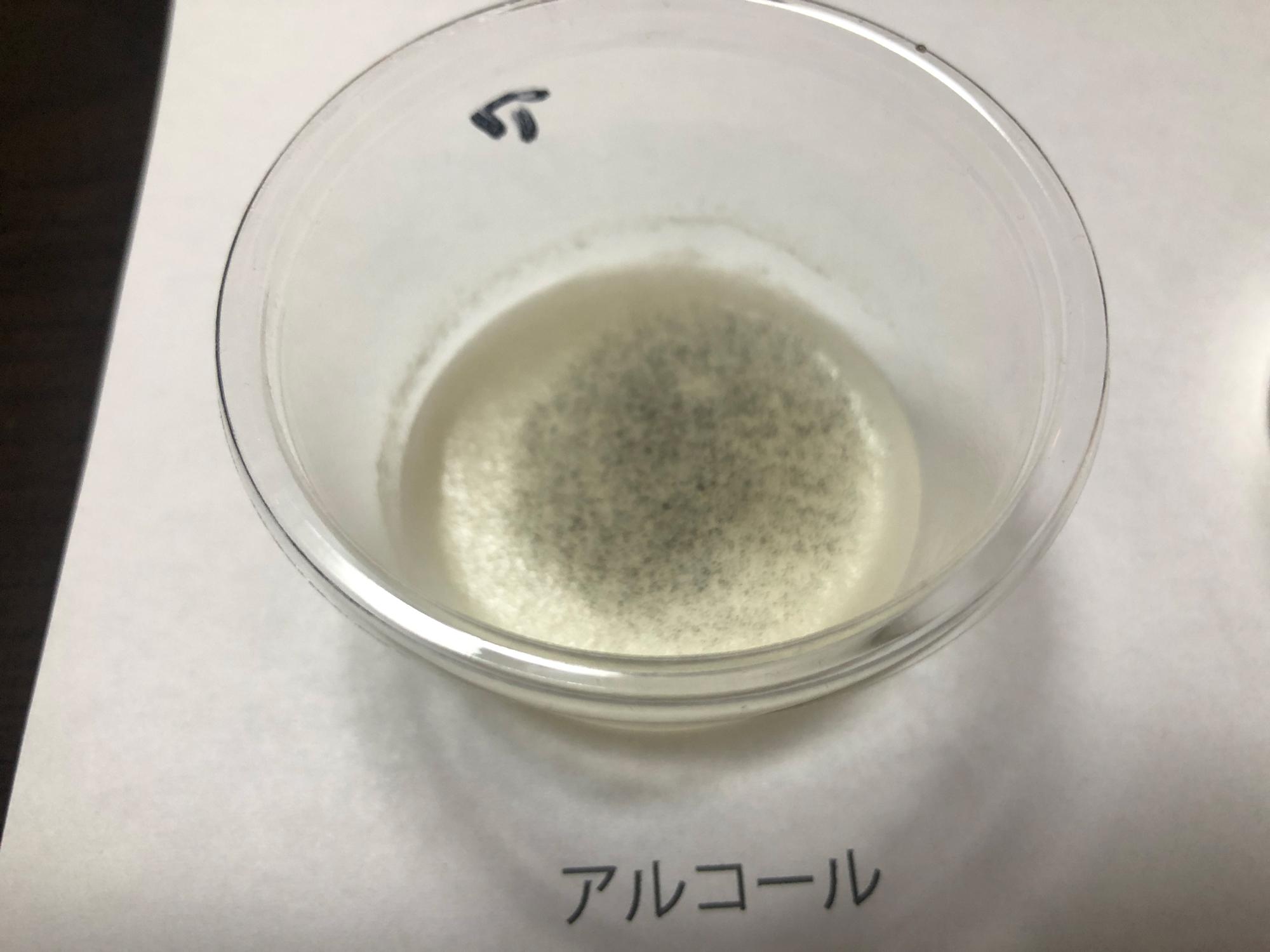抗菌テスト5日後